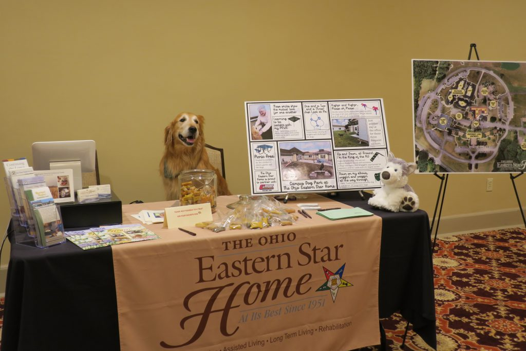 Golden retriever sitting at The Ohio Eastern Star Home table.